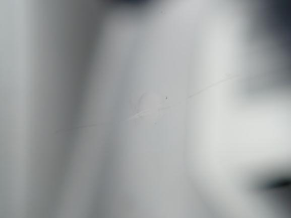 フロントガラス,飛び石,ウインドリペア