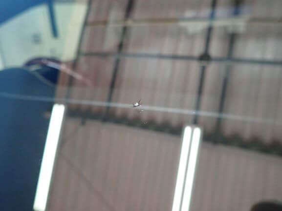 京田辺市 トヨタ ハリアー 飛び石 フロントガラス ヒビ割れ 修理